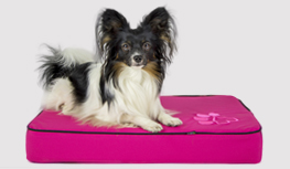 Orthopedisch hondenmatras