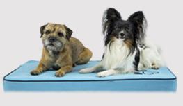 Hondenmatras-classic